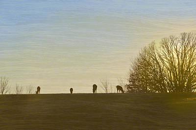 Digital Art - Serenity by Lena Wilhite