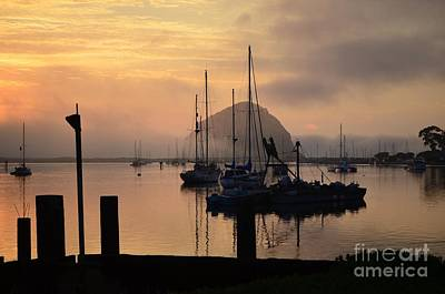 Photograph - Serenity Of Morro Bay by Johanne Peale