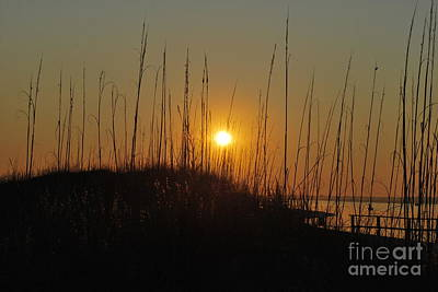 Photograph - Serenity Point Sunset by Bob Sample