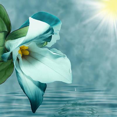 Serenity Art Print by Torie Tiffany