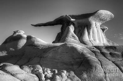 Photograph - Serenity Wing Bisti De-na-zin Wilderness by Bob Christopher