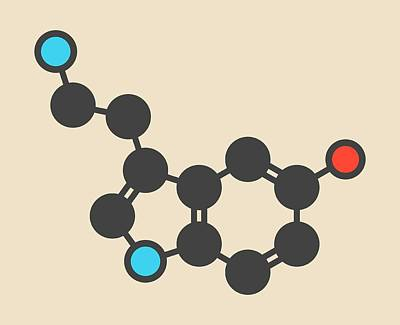 Serotonin Neurotransmitter Molecule Art Print by Molekuul