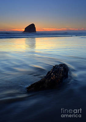 Oregon Coast Photograph - Set In Sand by Mike  Dawson