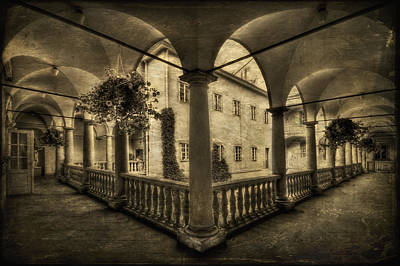 Photograph - Set Me Free by Evelina Kremsdorf