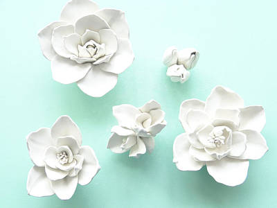 Set Of Five Magnolia Flowers- Magnolia Wall Sculpture Original by Lenka Kasprisin