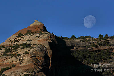 Art Print featuring the photograph Setting Moon by Steven Reed