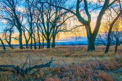 Setting Sun At Rocky Mountain Arsenal_1 Art Print