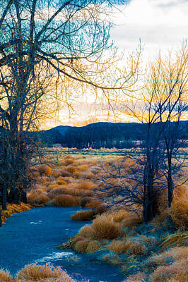 Photograph - Setting Sun At Rocky Mountain Arsenal_2 by Tom Potter