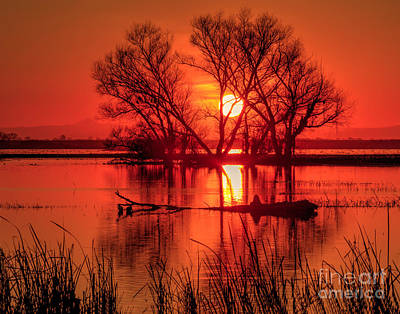 Photograph - Setting Sun by Beth Sargent