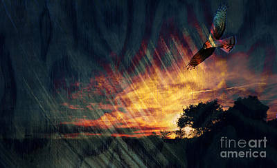 Red Tail Hawk Digital Art - Setting Sun by Robert Ball