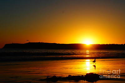 Photograph - Setting Sun by Tracey McQuain