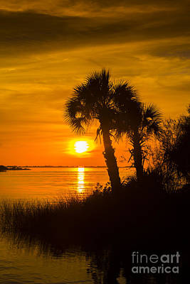 Gulf Coast Wall Art - Photograph - Settting Sun by Marvin Spates