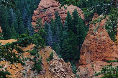 Photograph - Seven Falls Mountain's Colorado by Robert D  Brozek