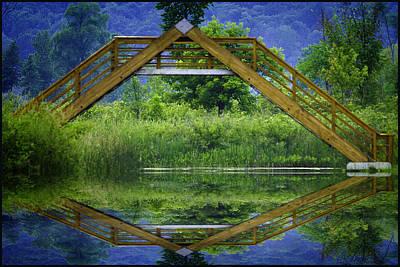 Ferns Photograph - Seven Ponds Nature Center Walkway by LeeAnn McLaneGoetz McLaneGoetzStudioLLCcom