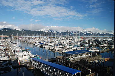 Photograph - Seward Alaska Harbor by Michael Gooch