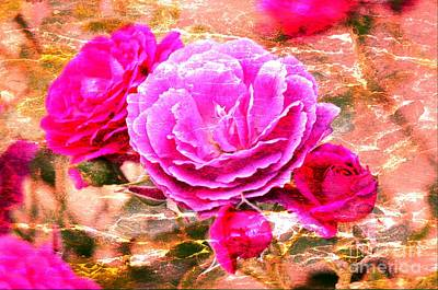 Photograph - Shabby Chic Roses 2 by Erica Hanel