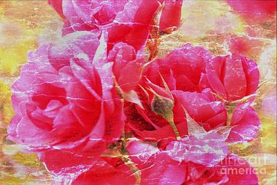 Photograph - Shabby Chic Roses by Erica Hanel