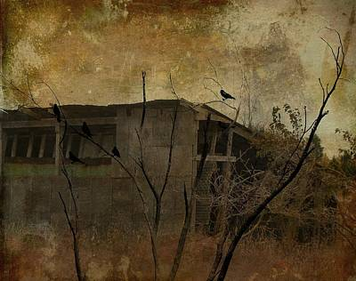 Abandoned Shack Print by Gothicrow Images