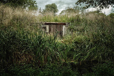 Shack In The Park Art Print by Joan Carroll
