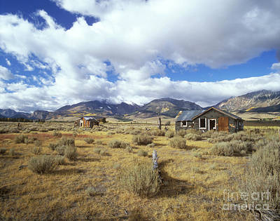 Photograph - Shacks On 395 by Jim And Emily Bush