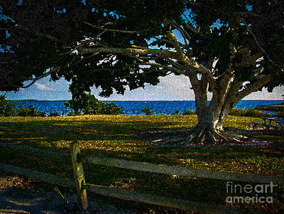 Split Rail Fence Photograph - Shade Tree In The Park by Eric Geschwindner