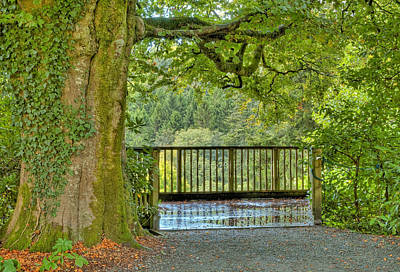 Photograph - Shaded Overlook. by Rob Huntley