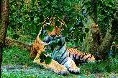 Shaded Stripes Art Print by Glenn Feron