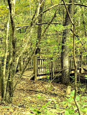 Photograph - Shades Mountain Bridge In The Forest by Maria Urso