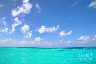 Photograph - Shades Of Blue by Charline Xia