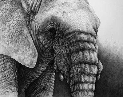 Elephant Pencil Drawing Drawing - Shades Of Gray In Pencil by Arti Chauhan