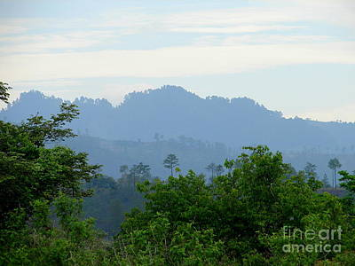 Photograph - Shades Of Honduran Blue by Lew Davis