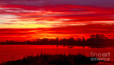 Photograph - Shades Of Red by Robert Bales