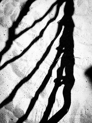 Photograph - Shadow 13 B W by Fei Alexander