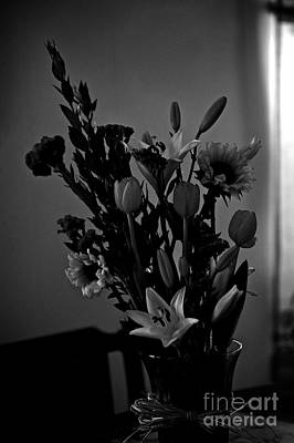 Frank J Casella Royalty-Free and Rights-Managed Images - Shadow Light Flowers in Vase by Frank J Casella