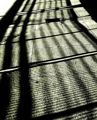 Photograph - 'shadow Lines' by Liza Dey