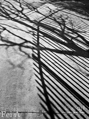 Photograph - Shadow Merge by Fei Alexander