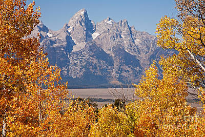 Photograph - Shadow Mountain Grand Teton National Park by Fred Stearns