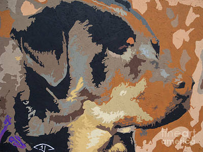 Rottweiler Painting - Shadow Of A Rottweiler by Kelly Hartman