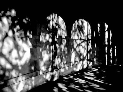 Shadow Play - Black And White Art Print