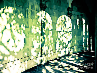 Photograph - Shadow Play by Colleen Kammerer