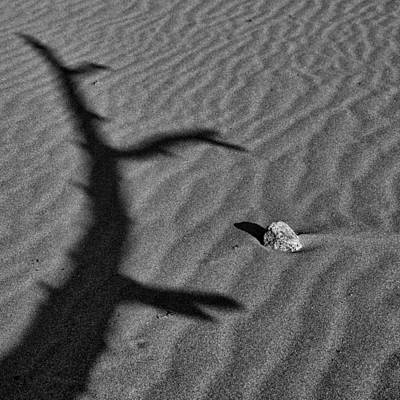 Photograph - Shadow Play by Ron White