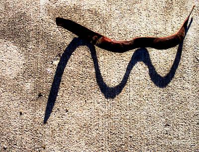 Shadow Play - Snake Art Print by James Aiken