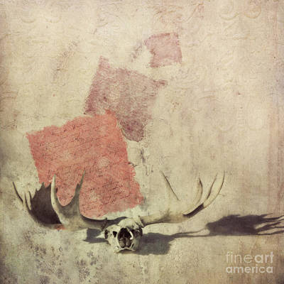 Red Skull Wall Art - Photograph - Shadow by Priska Wettstein