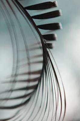 Photograph - Shadow Twist by Jenny Rainbow