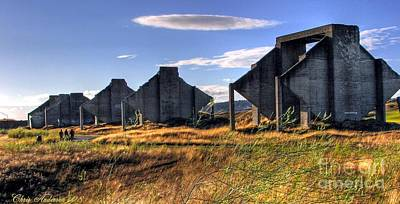 Photograph - Shadowed Sentinels by Chris Anderson