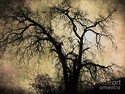 Bare Trees Digital Art - Shadowlands 13 by Bedros Awak