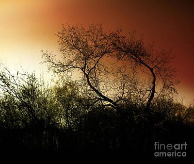 Trail Digital Art - Shadowlands 9 by Bedros Awak
