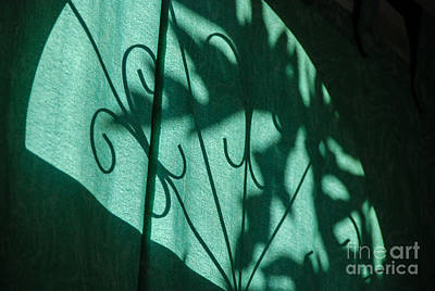Photograph - Shadows 11 by Fran Woods