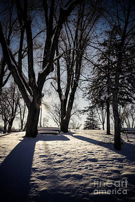 Day Photograph - Shadows And Light by Gloria Pasko