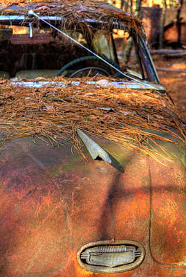 Pine Needles Photograph - Shadows And Pine Straw On An Old Rusty Car by Greg Mimbs